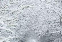 Snow.snow.snow