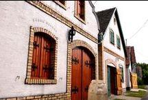 Wines, wine cellars / ... from my village. Hungary, Hajós