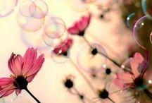 i really like :)