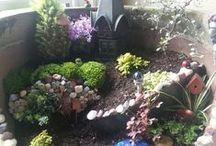 gardens and schrinkrayed gardens