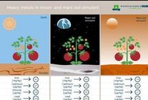 Food for Mars / What will the future inhabitants of Mars eat? And what kind of technology will they use to grow food? This board will cover relevant research, developments, articles and videos 'own-grown' fresh food for future astronauts on Mars.