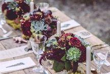 Mariage et succulentes / Wedding and succulent