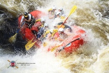"""Penobscot River Whitewater Rafting / Named, """"waters of descending ledge,"""" Penobscot River whitewater rafting offers a technical whitewater rafting experience."""