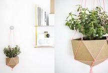 [indoor garden]