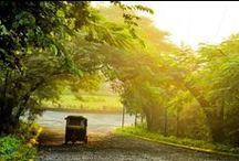 Delightful Goa