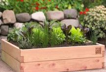 Raised Garden Beds by MinifarmBox / All about organic gardening with FSC certified raised garden beds