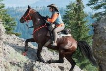 Endurance Riding / The Ultimate Extreme Event
