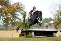 Eventing / the three disciplines of dressage, cross-country, and show jumping.