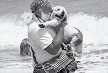 Bruce Weber / by LoveArtable