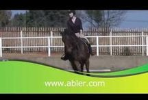 Abler Videos / Collection of You tube videos all about horses