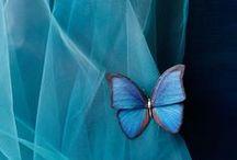 Blue Inspirational / Everything blue. Inspirational.