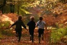 Autumn&Freinds
