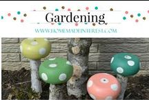 Gardening / Gardening tips and tricks. How to plant a designer garden.