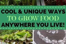 Go 2 Gardening / Gardening soothes the soul and is the pinnacle of natural living.