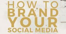 Poush | Get social for your business / Tips for growing your brand on socialmedia