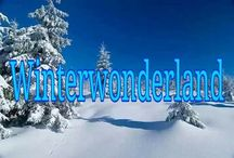 ⭐ Winter❄Wonderland ⭐ / No limits here  (feel free to pin everything you like)