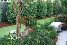 House design Landscaping