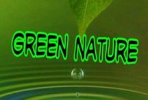 ⭐ Green Nature ⭐ / No limits here  (feel free to pin everything you like)