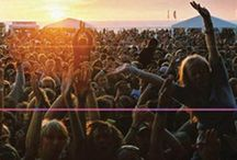 ⭐ Concerts & Festivals  ⭐
