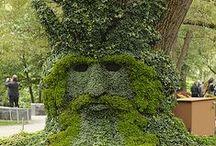 """Biogarden Nature ART / biogarden.es, Compartimos contigo uno de los rasgos de nuestros productos, la creatividad. Te presentamos los mejores vídeos e imágenes de """" Nature Art """"... la vida es un regalo.http://www.biogarden.es/"""