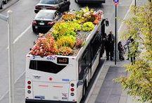 """Biogarden  Tejados Verdes / biogarden.es, Compartimos contigo uno de los rasgos de nuestros productos. NATURALEZA.  Te presentamos los mejores vídeos e imágenes de """"TEJADOS VERDES""""... la vida es un regalo.   http://www.biogarden.es/"""