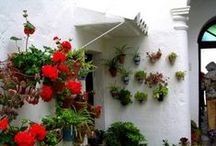 "Garden on a Wall...Living walls / Take a drab wall and make it come alive!! Hang pots of vibrant plants and flowers! Spring, summer or fall with hangapot, the ""hidden"" flower pot hanger...garden on a wall, a fence, a post, a stump, lattice, chain link or wrought iron...Anywhere!!    The best plant hanger featured in Better Homes and Gardens Do it Yourself magazine, Country Living and Urban Gardening www.hangapot.com"
