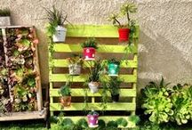 Pleasing to the Pallet / Pallet garden designs.Transform dull areas with hanging flower pots on repurposed pallets.    Hangapot hangers attach in seconds for easy DIY herb gardens. Great for Orchids as the plants get good air circulation.