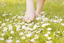Flowers to dream / Un espacio donde compartir fotos, con las flores como protagonistas, que nos hacen soñar