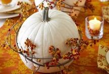 Seasonal: Autumn / Falling for fall. / by Melissa Camara Wilkins