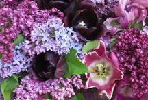 flowers / by Janie Mcduffie