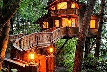 Home: Tree Houses