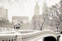 Winter Wonderland / by Alicia Klein