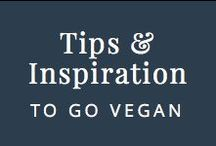 Tips & Inspiration to Go Vegan / Whether you want to stop eating animal products cold turkey, take small steps to get there or just eat vegan meals 1 day a week, I have you covered.