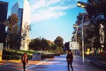 Deakin Campuses / by Deakin University