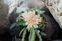 Flowers - dahlias / by English Wedding Blog