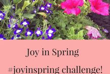 Joy in Spring / Lots of lovely Spring things