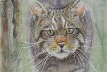 MY ARTWORK / My drawings and paintings; goricabh@yahoo.co.uk