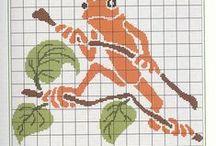 frog żaba