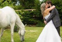 Svatební Fotograf, Kameraman / SVATEBNÍ FOTOGRAF Naše fotografka Monika dokáže zachytit na vaší svatbě ty nejmilejší okamžiky. Cit pro detail a zachycení přirozených situací jsou její hlavní přednosti. Na každou svatbu si bere kupu plnou nových fotografických nápadů. SVATEBNÍ KAMERAMAN Nepostradatelným doplňkem svatebních fotografií je i váš jedinečný den zachycený ve filmu. Kameraman Ondra je připraven nerušeně natočit chvilky radosti, smíchu a dojetí, které jsou nedílnou částí každé svatby.