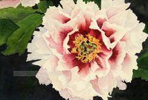 Kwiaty i wzory