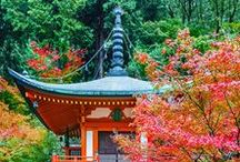 Amazing Japan / Japan travel posts including detailed information about everything you need to know about Japan.