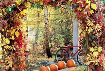 Autumn / by Alice Fourman