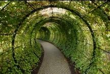 garden=nature=life !!!!