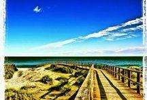 Elche Oasis Mediterráneo / Elche, es un Oasis Mediterráneo.. desde los iberos, esta tierra fue un enclave estratégico en el mediterráneo, en el que las civilizaciones han ido dejando su huella, romanos, árabes y otras culturas, hacen de Elche, un auténtico Oasis Mediterráneo. Patrimonio e Historia, Gastronomía , su excepcional clima y sus naturales playas, permiten hoy, disfrutar de tu actividad favorita, en pleno Oasis. Conoce nuestro Entorno!  / by Huerto Del Cura