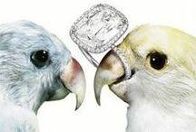 Jewelry Ads