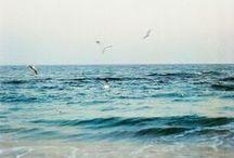 My ecstasy ocean