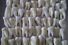 All things Teeth / 'Cause I'm a Dental Student