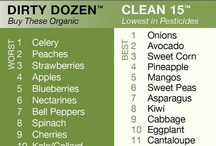 healthy recipes / by Felix Denny