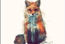 Foxy stuff