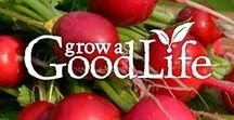 GrowaGoodLife.com / Pins from the website Grow a Good Life https://growagoodlife.com gardening - preserving the harvest - cooking from scratch - garden to table recipes